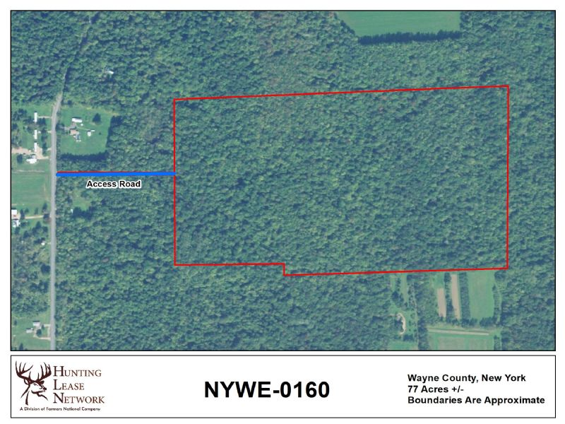 Hunting Land For Lease Recreational Real Estate Land Services